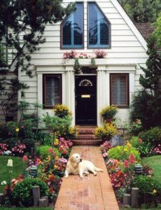 Home Insurance With A Dog Exclusion
