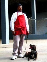 dog liaiblity insurance