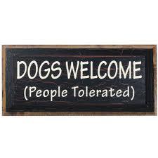 california dog liability insurance