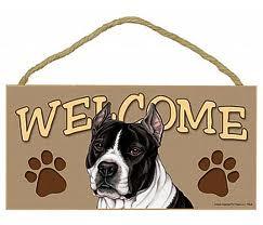 san diego dog liability insurance