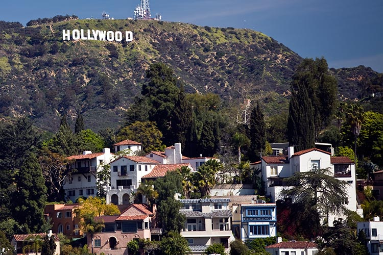 Home Insurance in Hollywood Hills